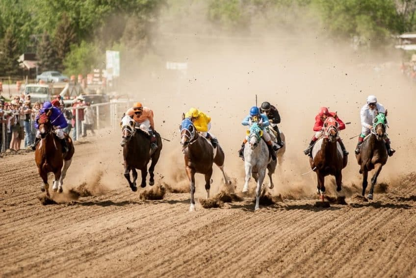 In between the bucking horse action is pari-mutuel horse racing around the fairground track. It requires just a few minutes to change the configuration of the arena fencing to accommodate the races.