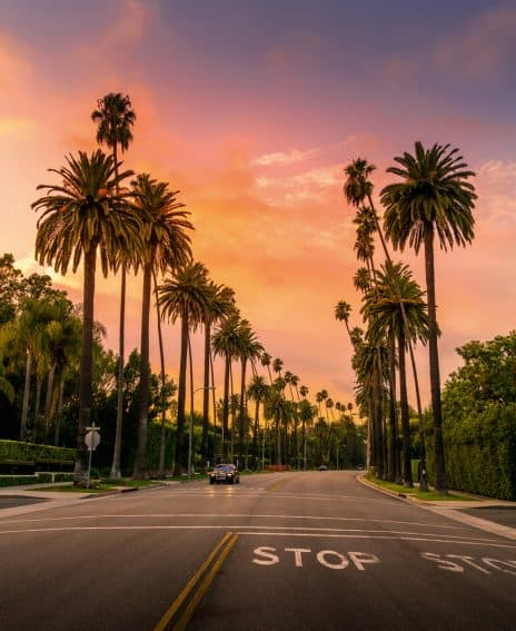 love Beverly Hills because there are no cars on the side of the streets and the palm trees give you an incredible leading line.