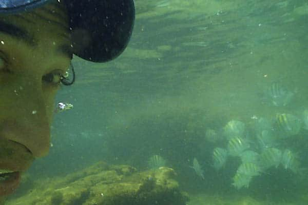 Swimming underwater in Azedinha beach, Buzios. If you visit Azeda and Azedinha, don't forget to take your snorkel with you! Different types of fish can be easily seen very near the seashore.
