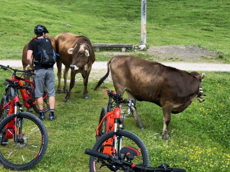 Austria: Mountain Biking in Montafon 18
