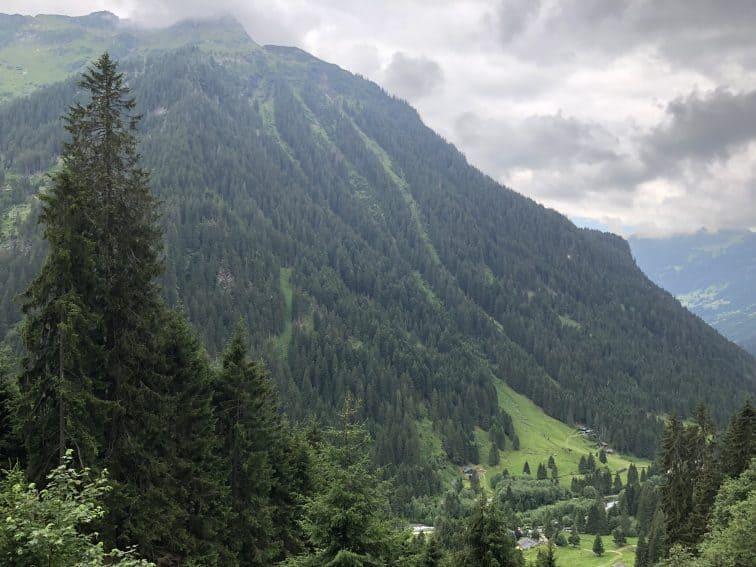 The trails on this big mountain were formed by avalanches, not ski trail designers.