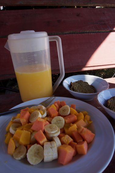 Breakfast of papayas, mangoes and bananas.