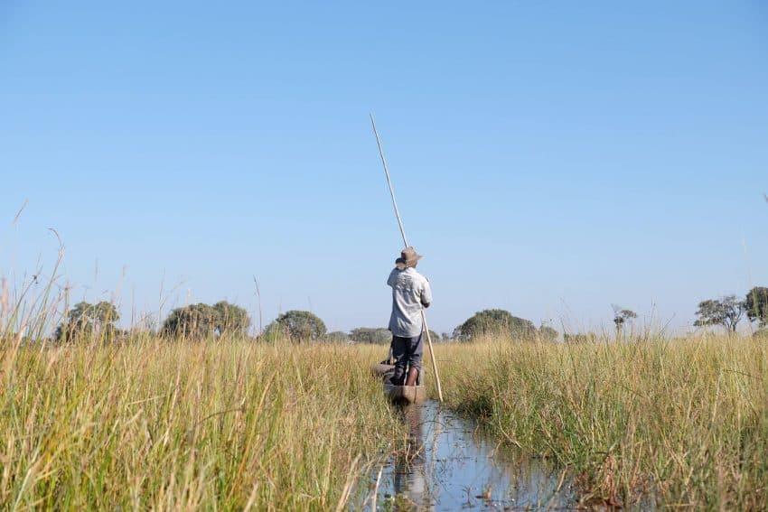 Paddling through the Okavango Delta in Botswana. Becky Evens photos.
