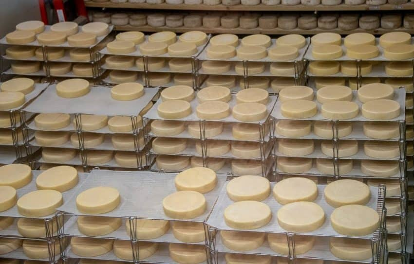Family owned and operated Famille Migneron produces six varieties of cheese which customers can sample in their showroom.