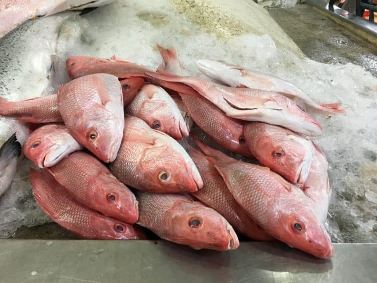 Red snapper at the market.