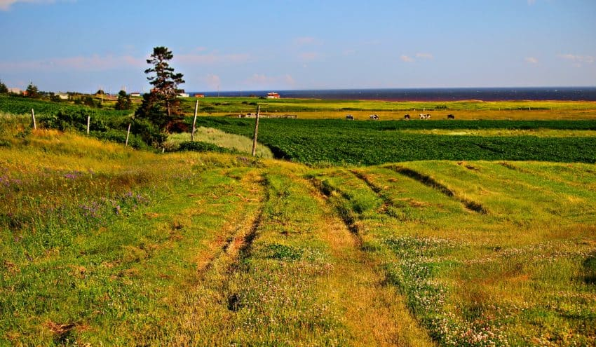 West Cape, Prince Edward Island, photo by Rachael McGrath