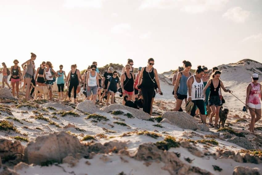 A dog walk on the beach in Aruba, Caribbean. Rachael McGrath photos.