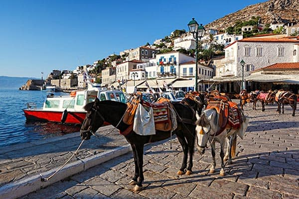Goods are moved around by donkey on Hydra's waterfront.