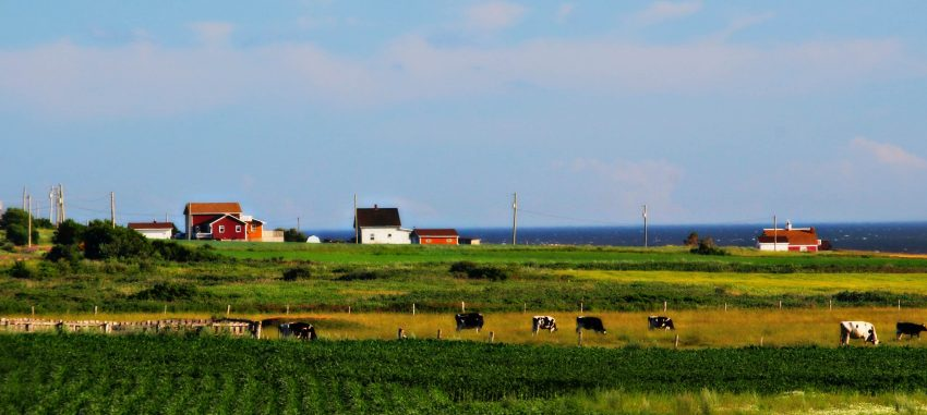 West Cape Prince Edward Island, photo by Rachael McGrath