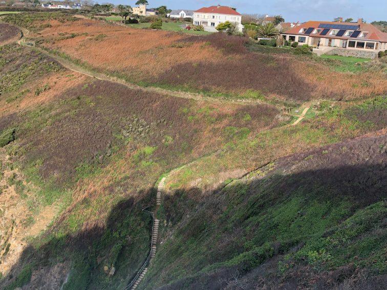 A coastal trail on a cliff in Guernsey.