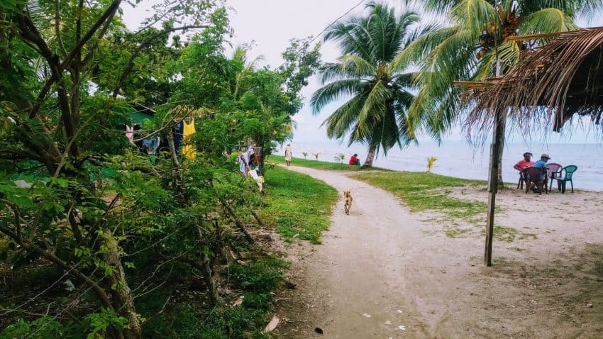 A quiet path along the coast in the Garifuna Town section of Livingston, Guatemala, where locals relax away from the frenzy of the parade route.