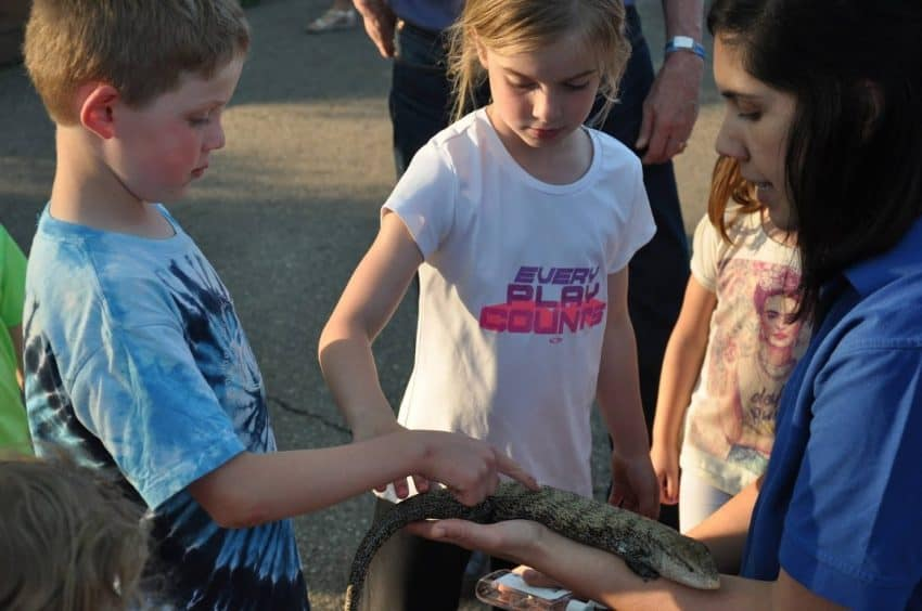 Kids check out a reptile at the zoo in Madison.
