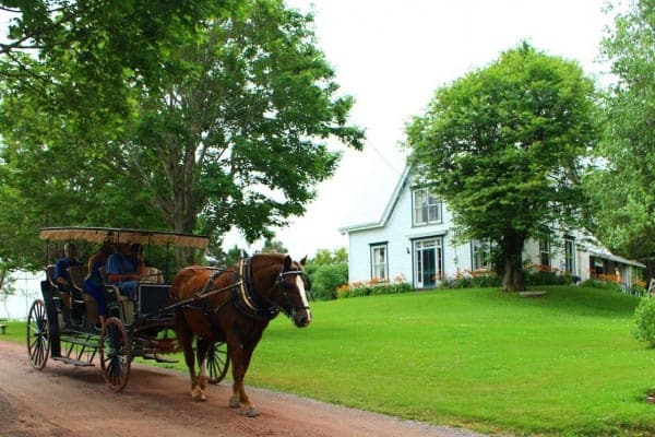 Green Gables Still Thrills Visitors and Readers Alike