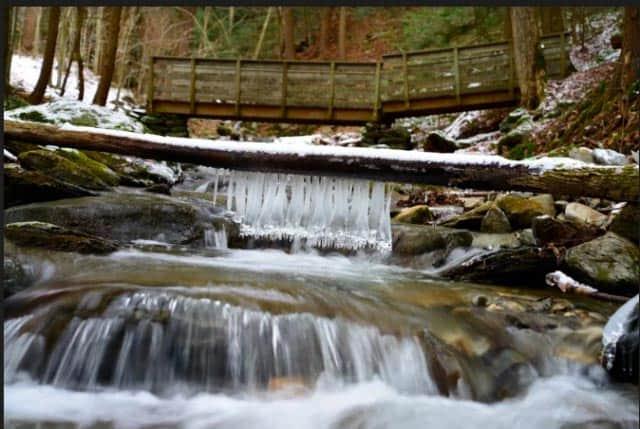 Adirondack stream.