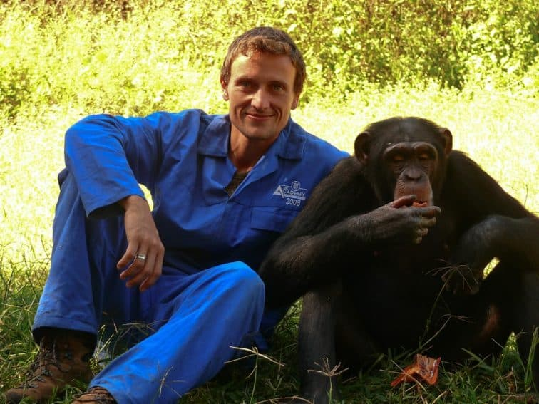 The author: I absolutely enjoyed getting close to our ancient relatives. a chimpanzee in Zambia