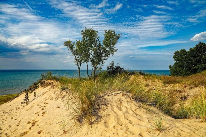 Some of the dunes at the national park reach up to 200 feet high.