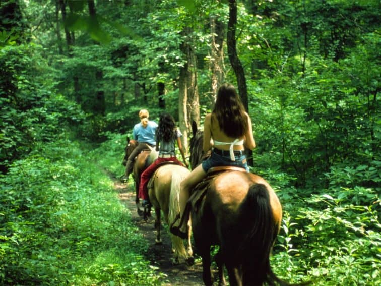 Horseback riding is a popular activity at Indiana Dunes National Park.