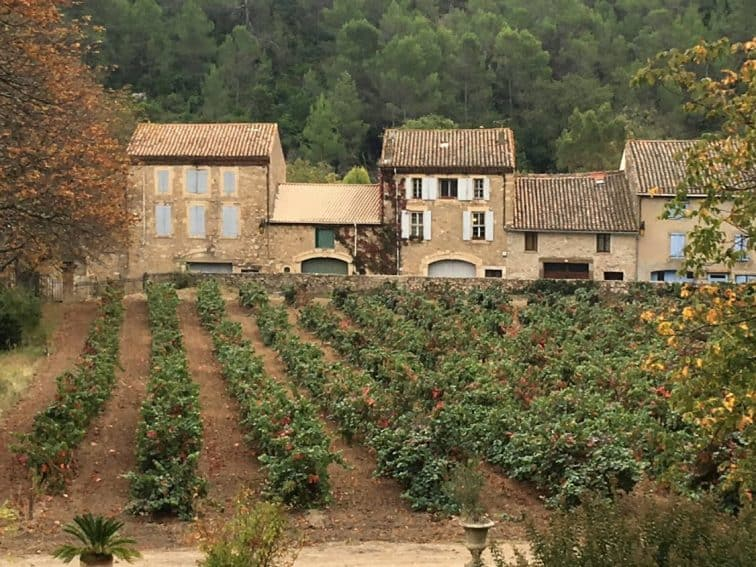 The chateau's terrace overlooks its vineyards and some of the village.