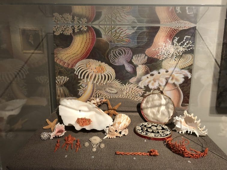 A portion of the Bejeweled exhibit at the Albany institute of Art. This series ends June 9th.