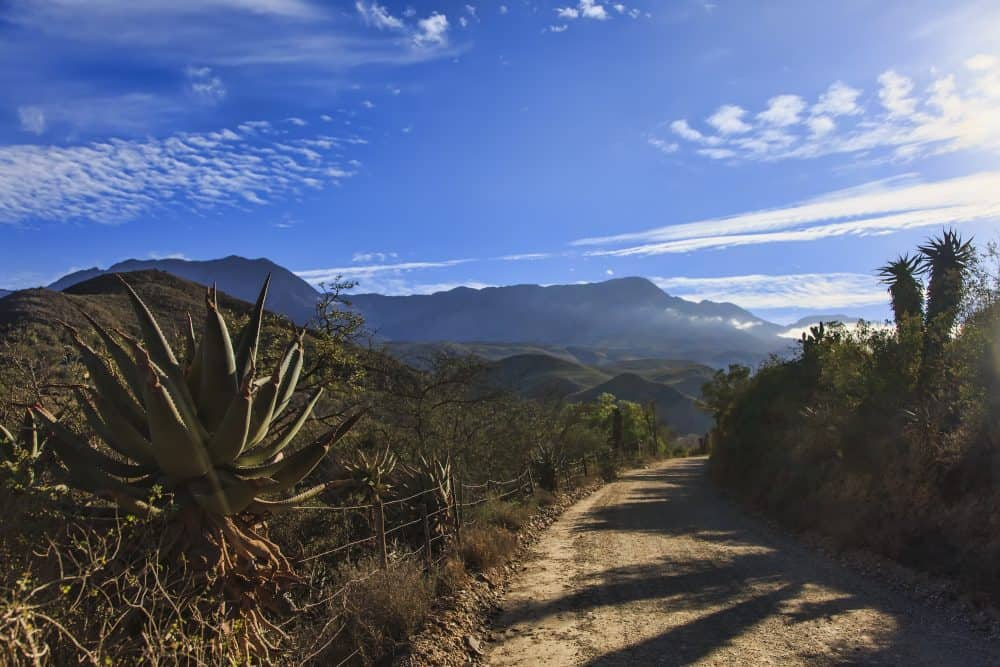 The Karoo: Dramatic South Africa Tour of Route 62 1