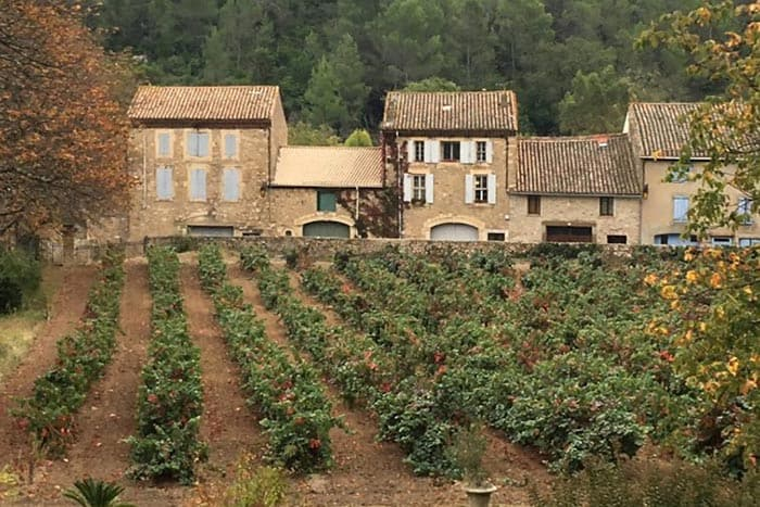 A Tale of Two Rebellions: From Edgy Barcelona to Serene Southern France
