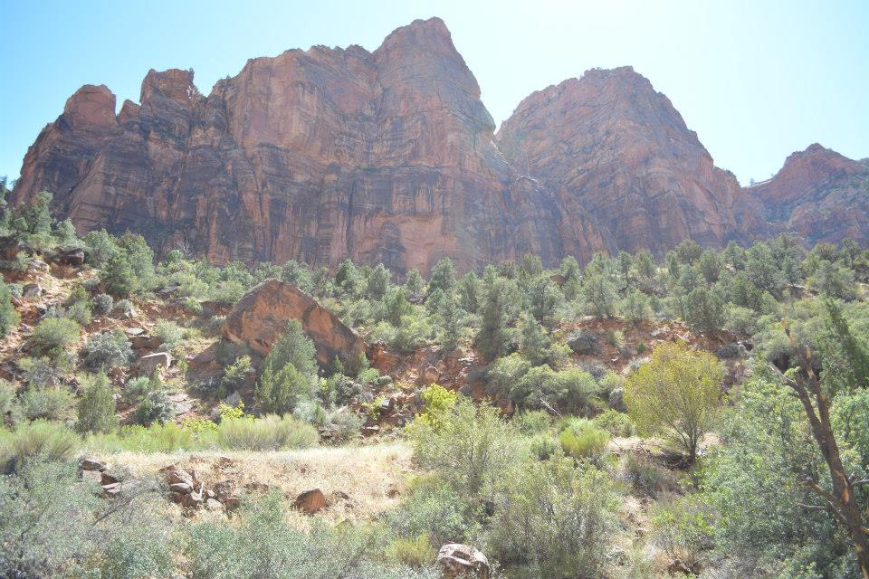 Zion National Park is a great place to explore or even just drive through on your way to the many other wonders of Utah.
