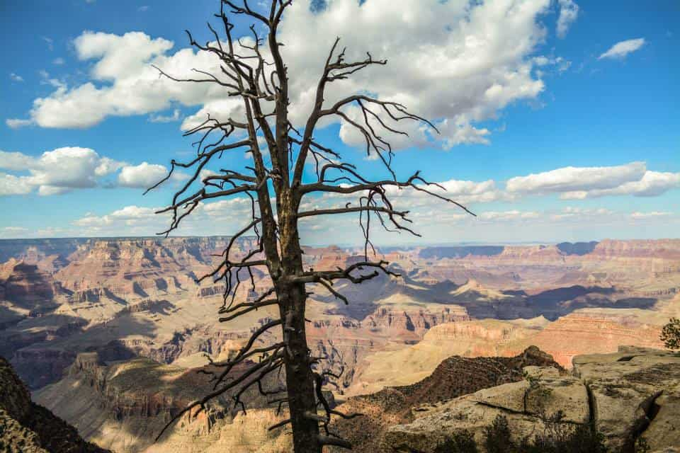 There are plenty of ways to experience the canyon: hiking, horseback riding, rafting down the river, camping, and more.