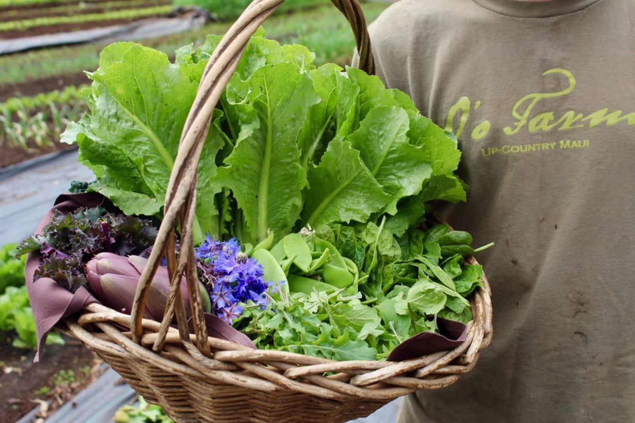 O'o Farms salad basket. Maui