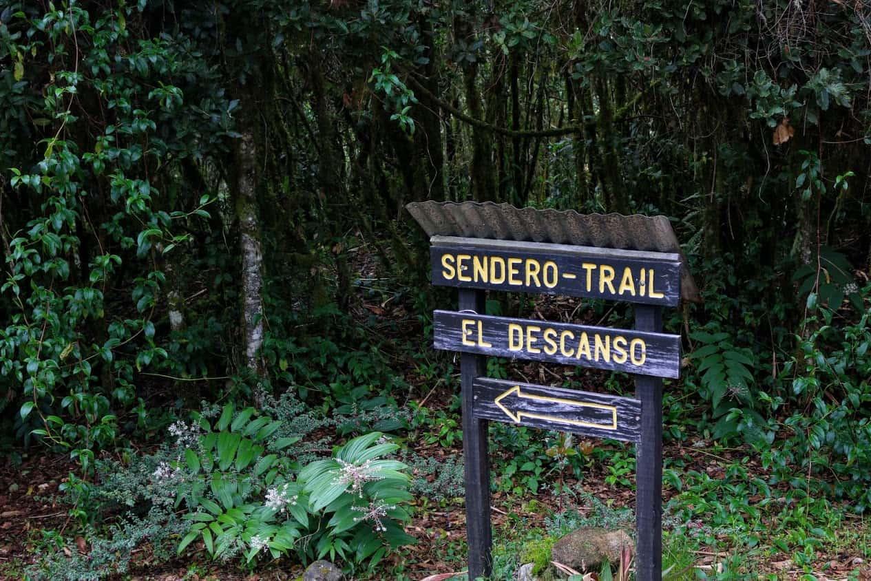 The beginning of Sendero El Descanso Costa Rica