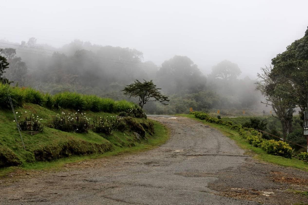 Fog is common on the Cerra de la Muerte.