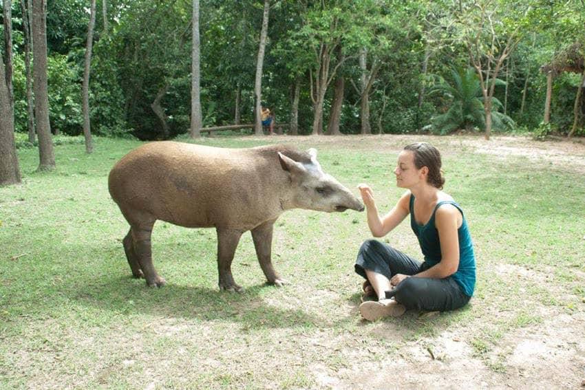 Making a new friend, Bonito, Brazil