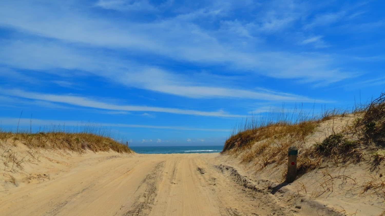 Cape Hatteras National Seashore. Rachael McGrath photos.