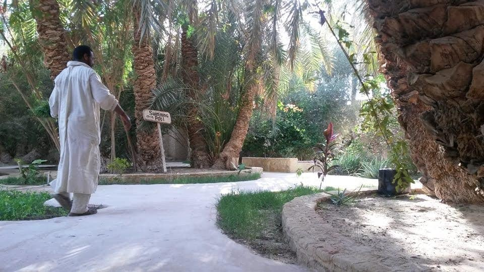 Garden paths at the Galiet Ecolodge, Siwa, Egypt.