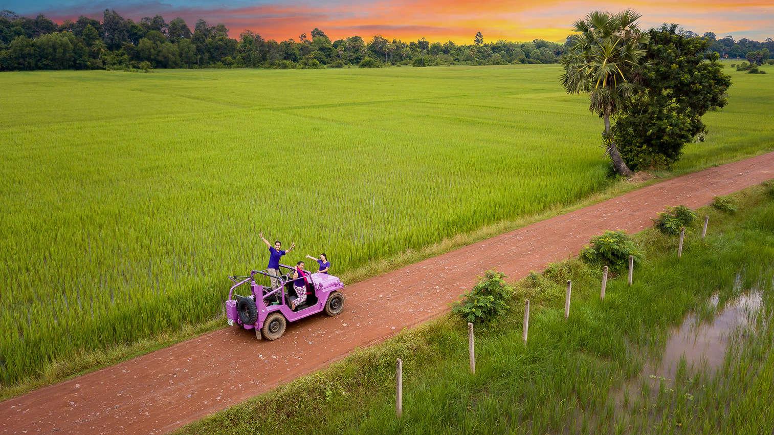 Lavender Jeep