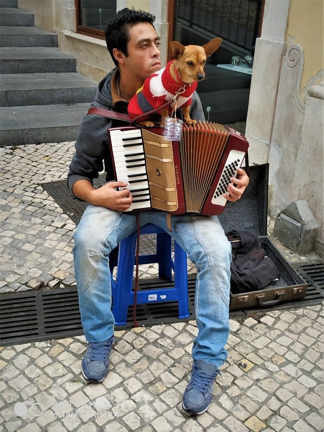 Music man on the streets of Coimbra, Portugal.