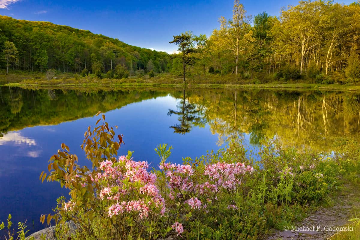 Delaware Water Gap: The Spectacular Wilderness Between NJ and PA 16