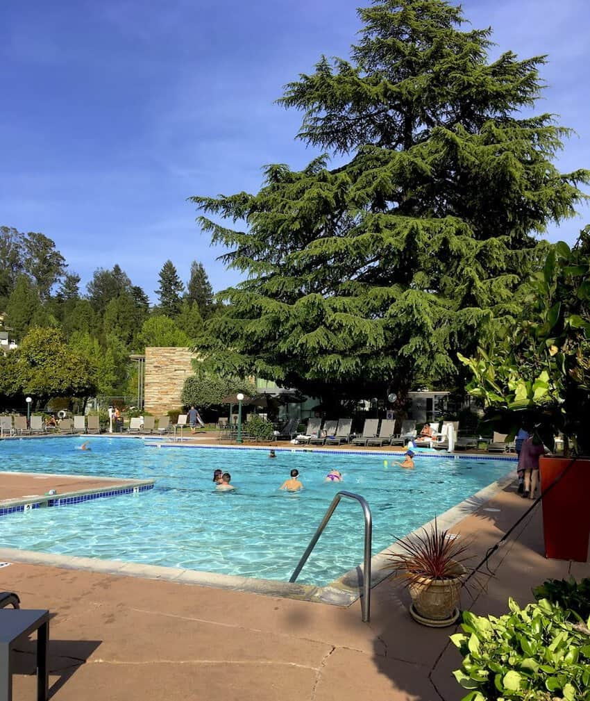Flamingo Resort pool