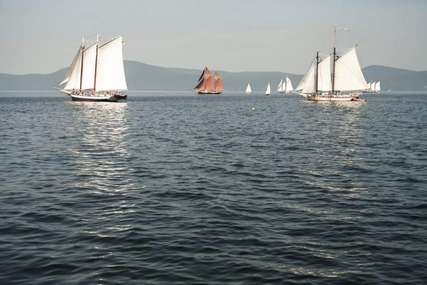 Sails on the horizon during the Great Schooner Race along the Maine coast in July 2019.