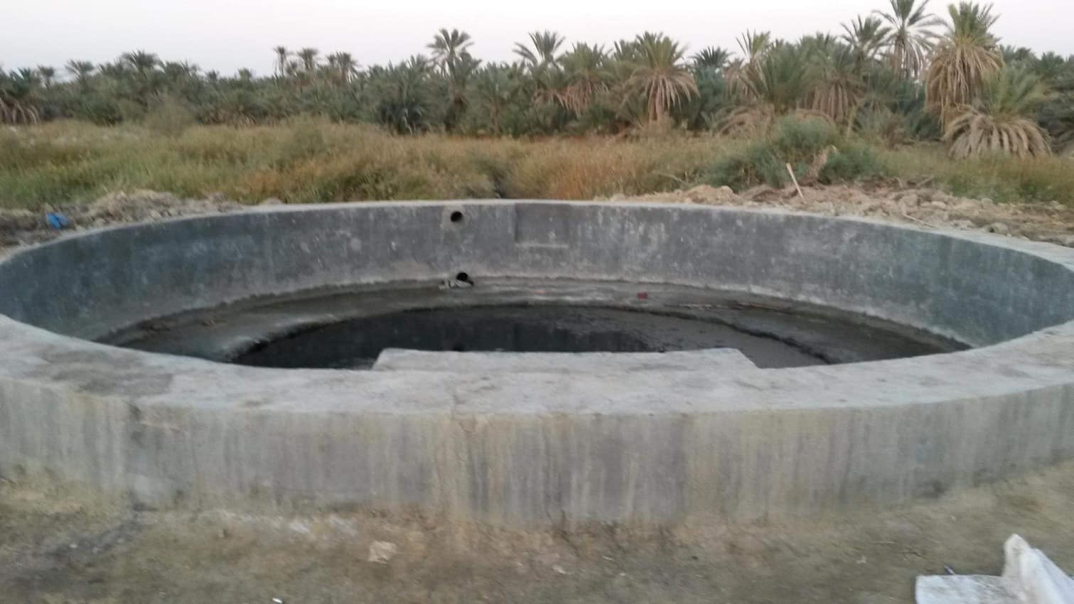 An isolated spring called Breezy in Siwa.