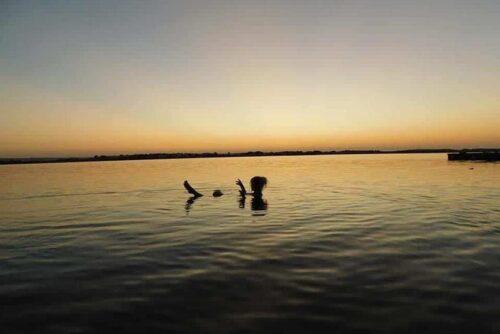 Lake Siwa Swimming