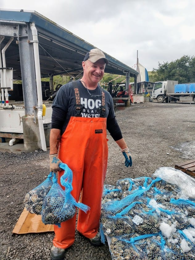 The day's oyster catch is bagged and ready to go at Hog Island, California. Anne Braily photos.