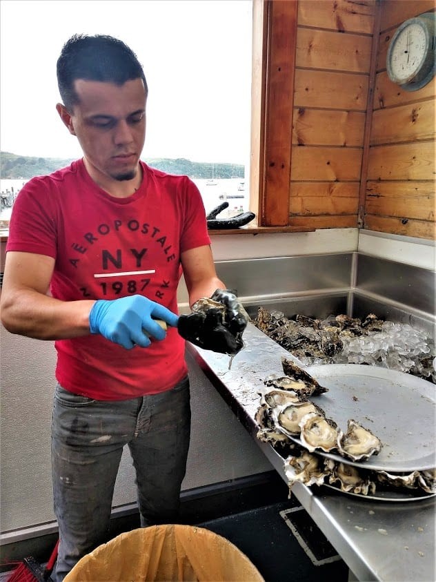 An expert oyster shucker in Tomales Bay, California.