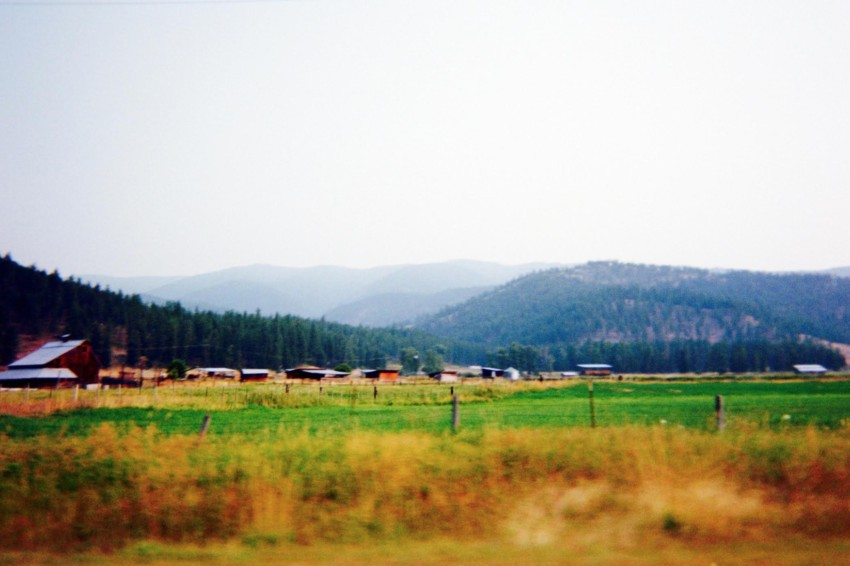 Farmland by a campsite in Montana, traveling without a camera Jared Shein photo