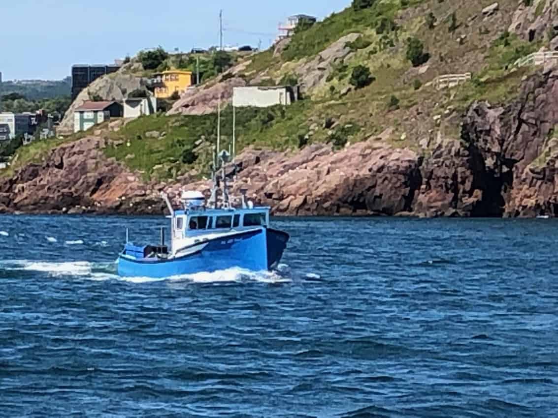 St Johns Harbor, Newfoundland Canada.