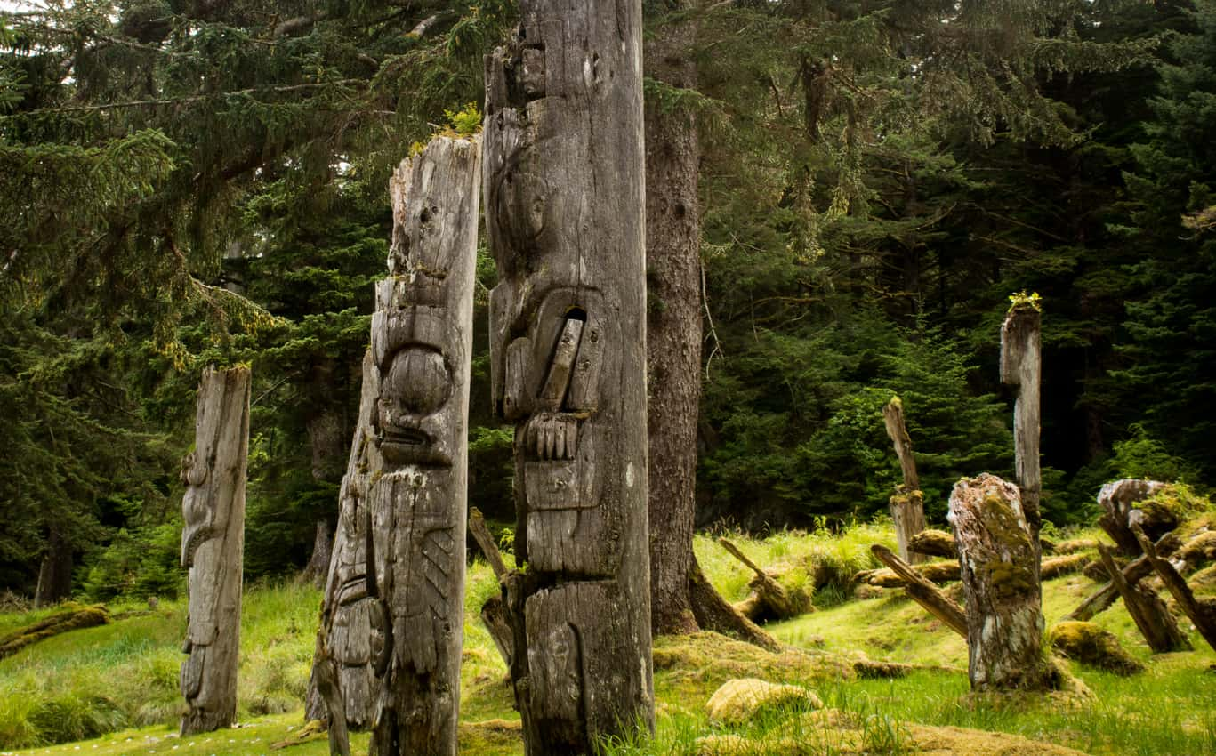 Carved trees in Haida Gwaii