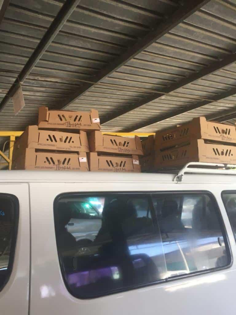 A box of chicks atop a van