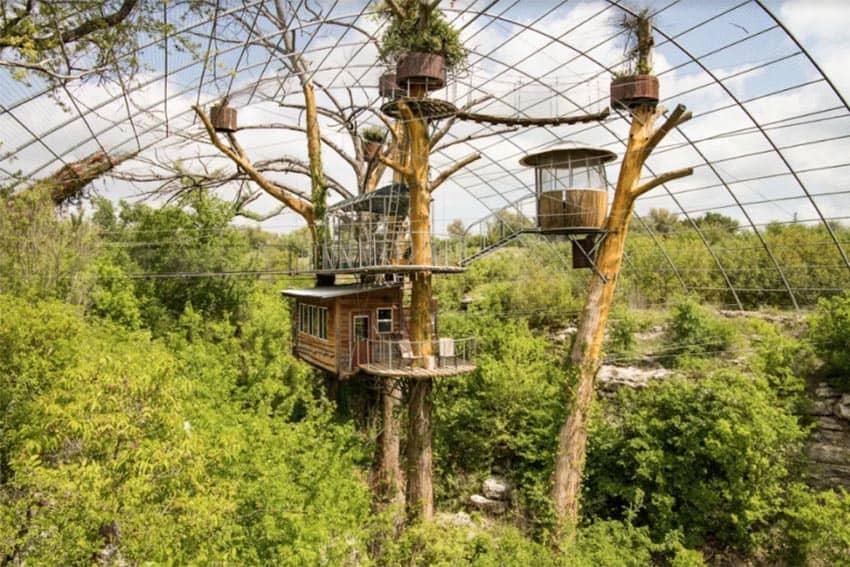zipline to that treetop suite