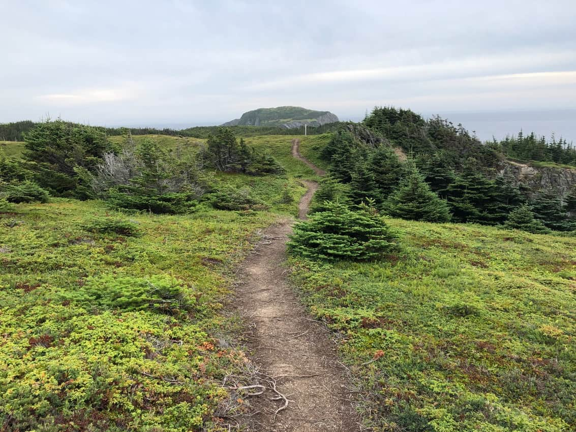 Newfoundland and Labrador: The Far East of North America 33