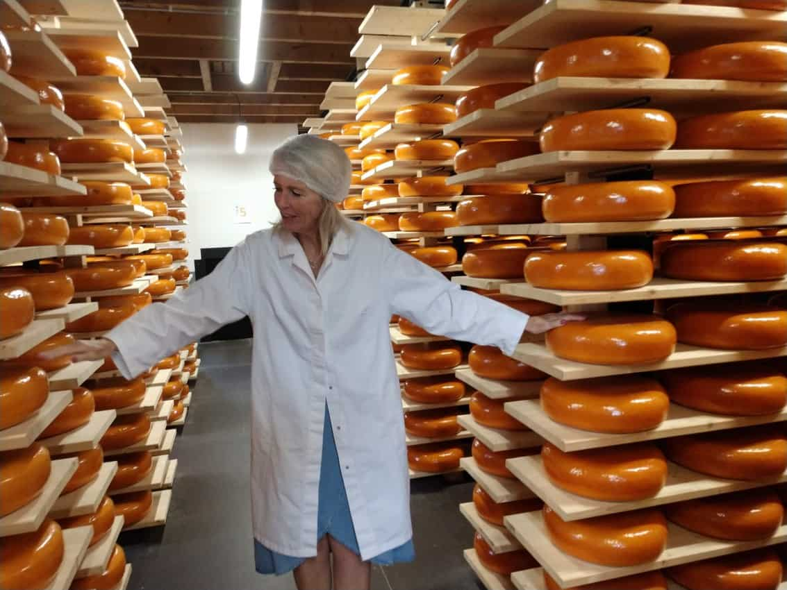Plenty of Cheese in Holland!