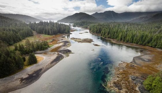 A river in Haida Gwaii